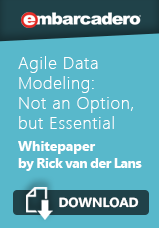AgileDataModeling-RvdLans-WP-Banner 159x228 CTA Download